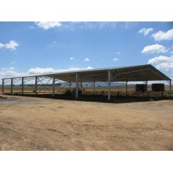 Custom Large Sheds